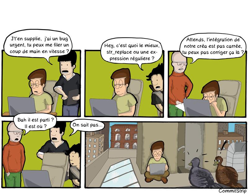 Focus, CTO, PM, Coder, DA, Disturbing