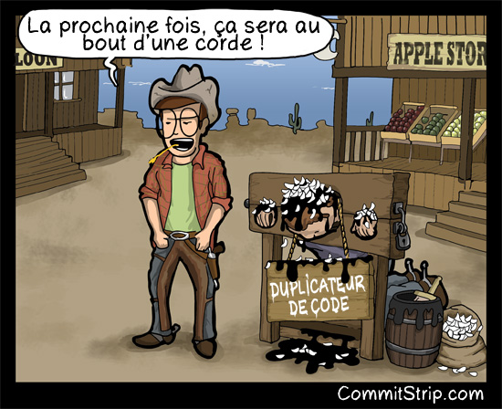 Strips-Duplicateur-de-code-550-final.jpg